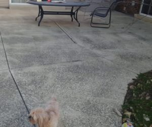 sunken concrete patio