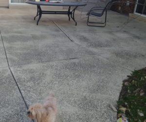 sunken concrete patio